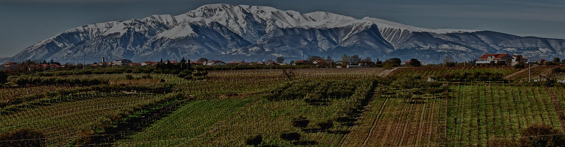 Tenuta Ulisse, Abruzzo